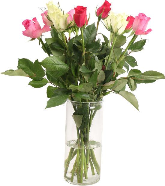 Ruusut 12-pakk, Korkeus 40 cm, Monivärinen