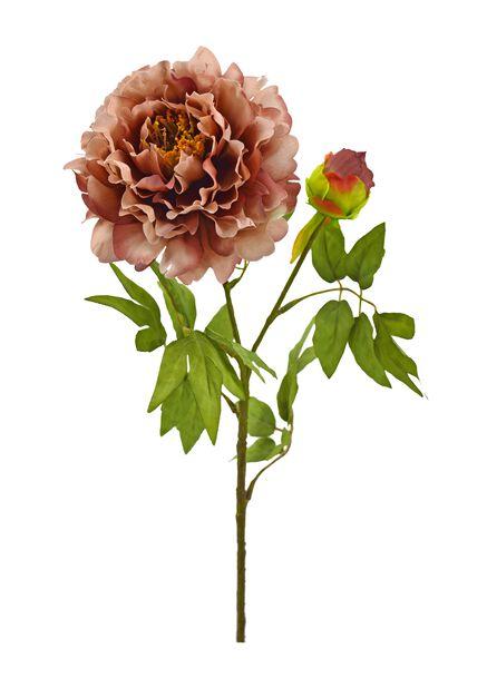 Pioni tekokasvi, Pituus 70 cm, Pinkki