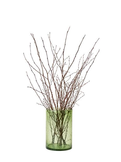 Koivunoksat, Korkeus 45 cm, Ruskea