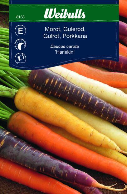 Porkkana 'Harlekin'