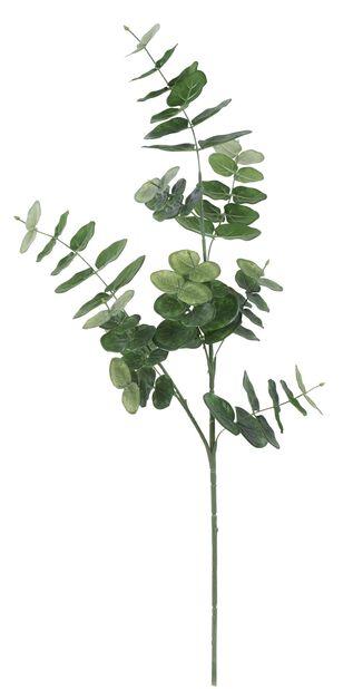 Eukalyptuksen oksa tekokasvi, Korkeus 75 cm, Vihreä