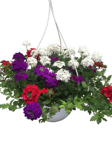 Midsummer Romantic Garden h. basket 25 cm