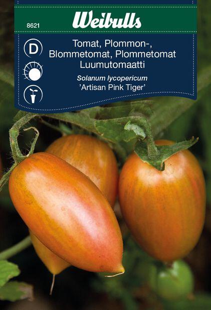 Tomaatti 'Artisan Pink Tiger'