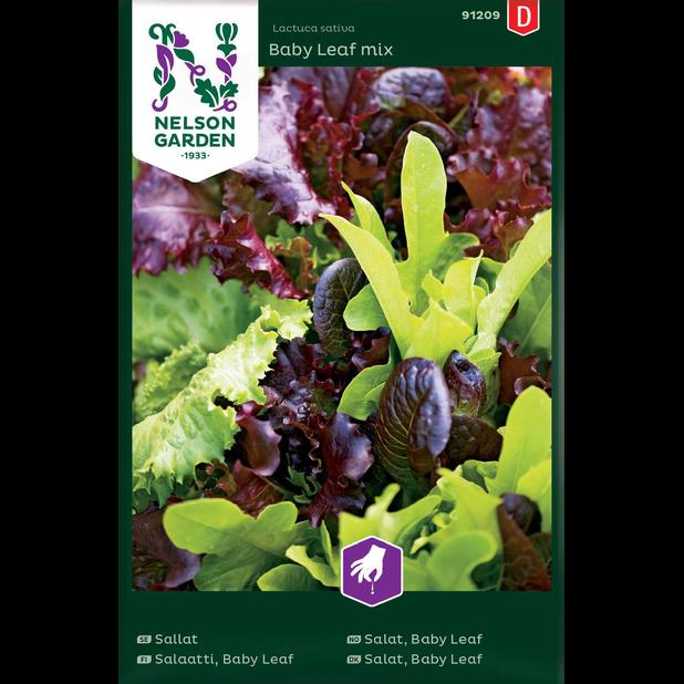 Salaatti, Baby Leaf mix, Monivärinen