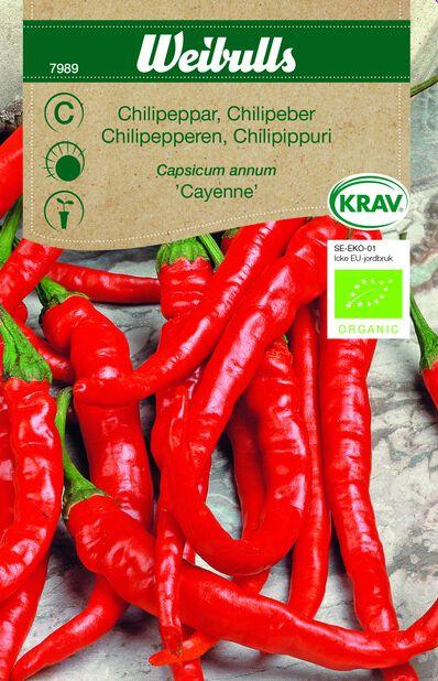 Chili 'Cayenne' Luomu