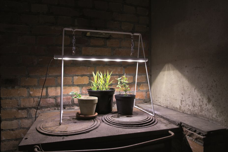 Kasvilamppu Grow light duo