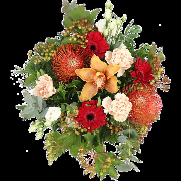 Kimppu Lisa, Korkeus 40 cm, Useita värejä