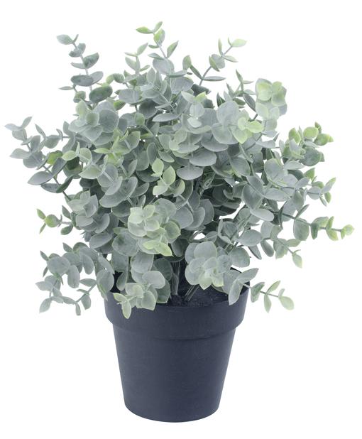 Vihreä tekokasvi, Korkeus 25 cm, Vihreä