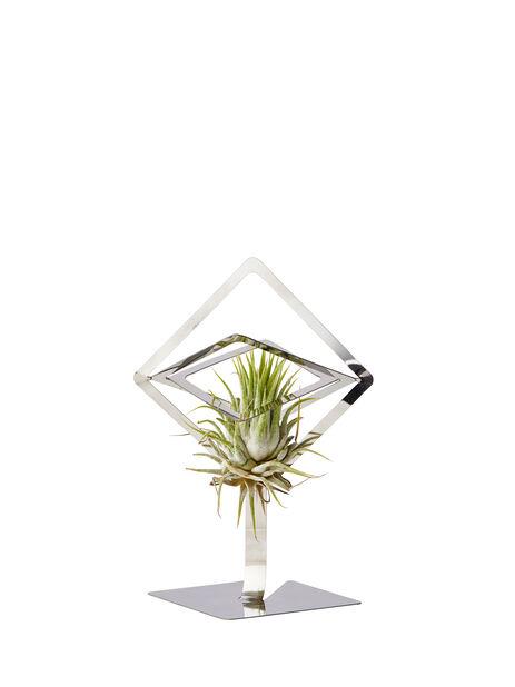 Ilmakasvin pidike Sam, Korkeus 15.5 cm, Hopea