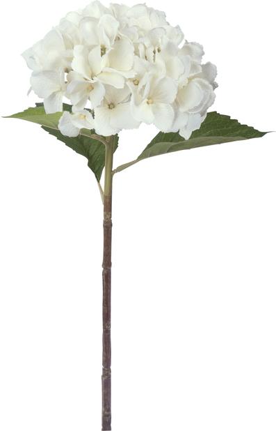Leikkohortensia, K51 cm, valkoinen, tekokasvi