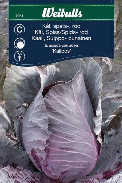 Suippokaali 'Kalibos'