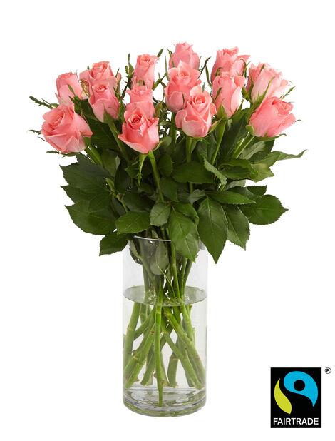 Ruusunippu 15 kpl 50 cm