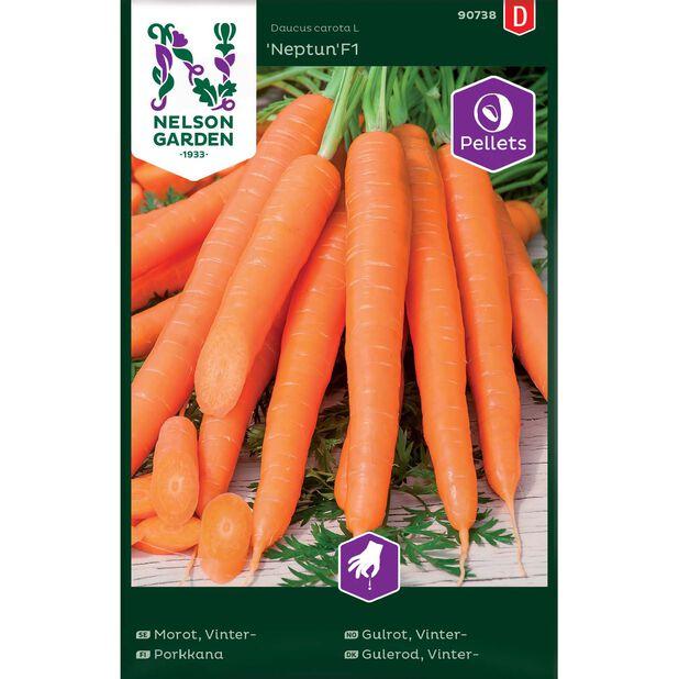 Porkkana 'Neptun'F1, Monivärinen