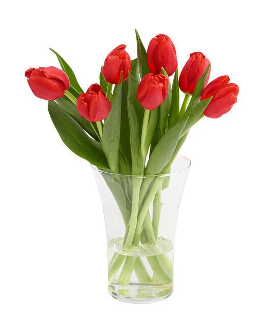 Tulppaani, Korkeus 38 cm, Useita värejä