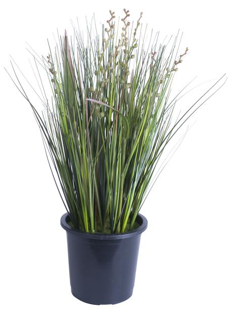 Ruoho Erilaista tekokasvi, Korkeus 36 cm, Vihreä
