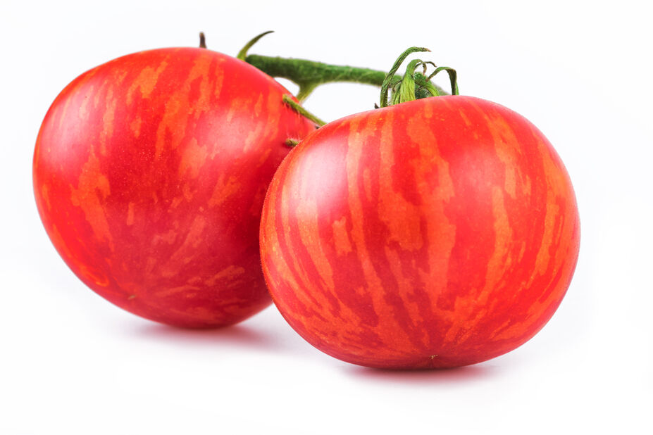 Tomaatti 'Tigerella', Ø10.5 cm, Punainen