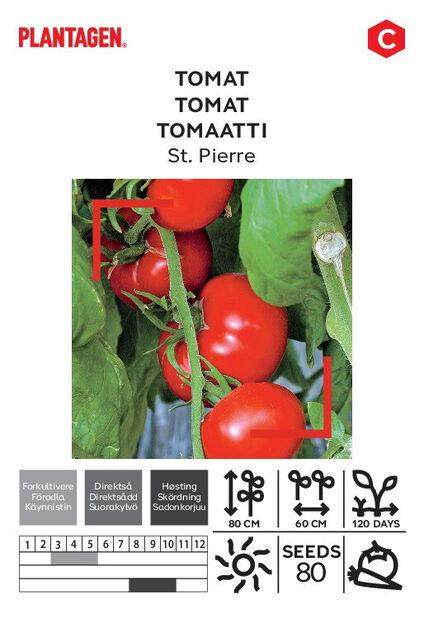 Tomaatti 'St. Pierre'