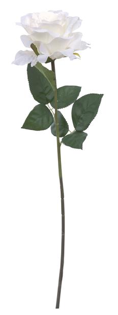 Leikkoruusu, K63 cm, valkoinen, tekokasvi