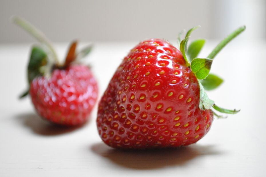 Fragaria 'Ruby Ann' 6-pack