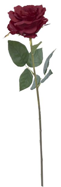 Leikkoruusu, K63 cm, punainen, tekokasvi