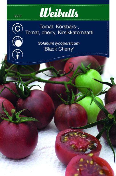 Kirsikkatomaatti 'Black Cherry'