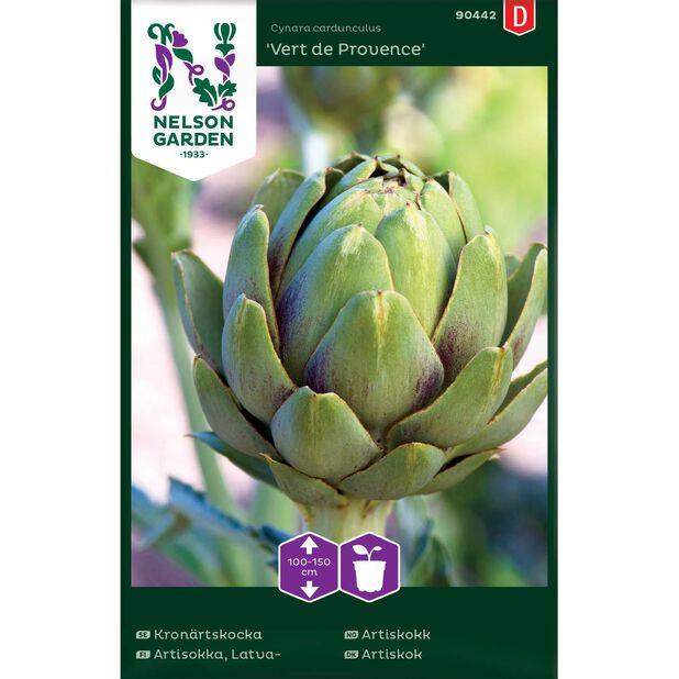 Latva-artisokka 'Vert de Provence', Monivärinen