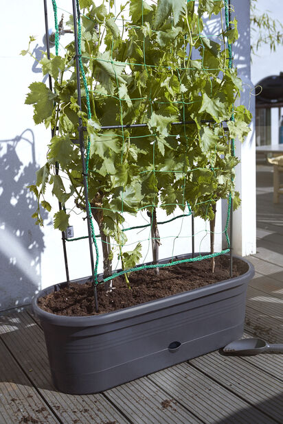 Vihannestuki Green Basics, Pituus 80 cm, Musta