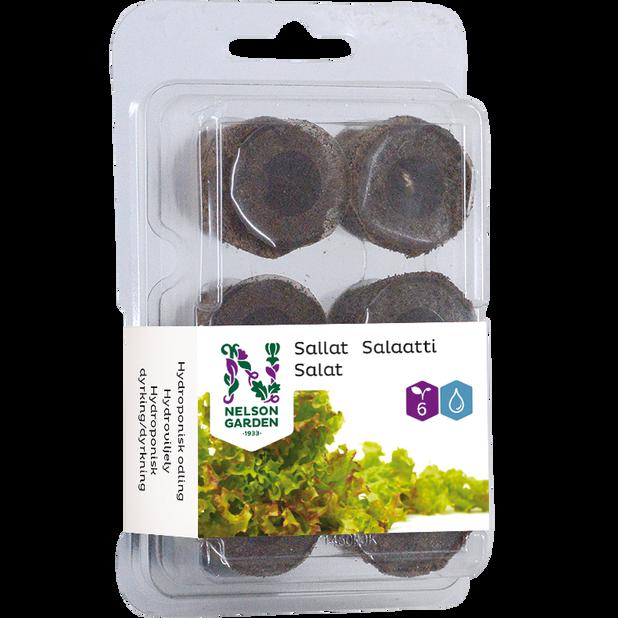 Siemenkapseli vesiviljelyyn salaatti, 6 kpl, Monivärinen