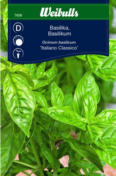 Basilika 'Italiano Classic'