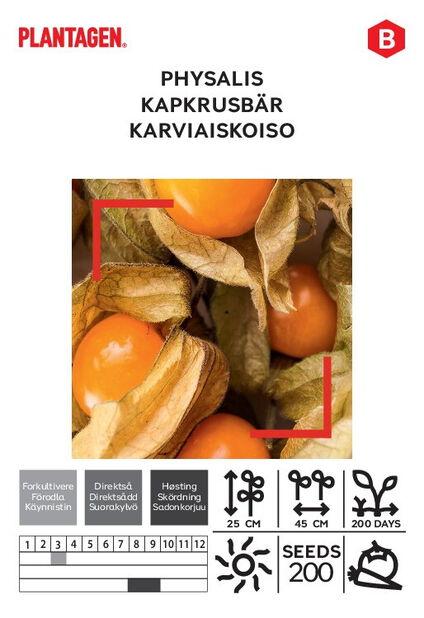 Karviaiskoiso