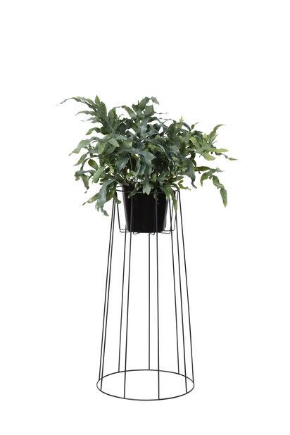 Kukkapylväs Danny, Korkeus 55 cm, Musta