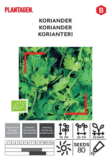 Korianteri