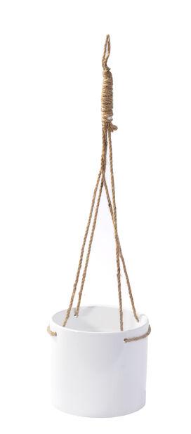 Amppeli Flora 16 cm