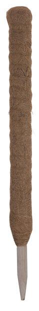 Kasvituki kookoskuitua, Korkeus 60 cm, Ruskea