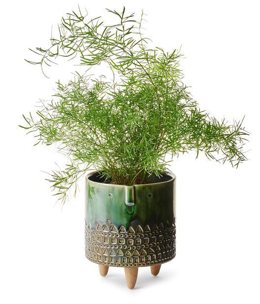 Jalallinen ruukku Wille, Ø15 cm, Vihreä