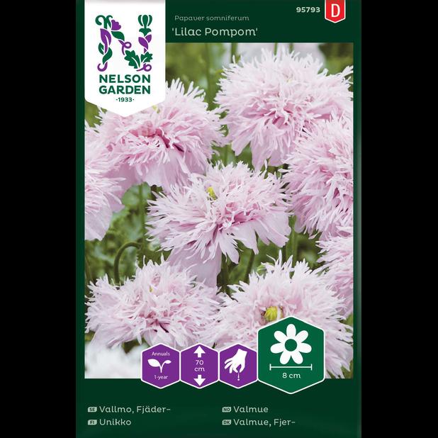 Unikko 'Lilac Pompom', Monivärinen