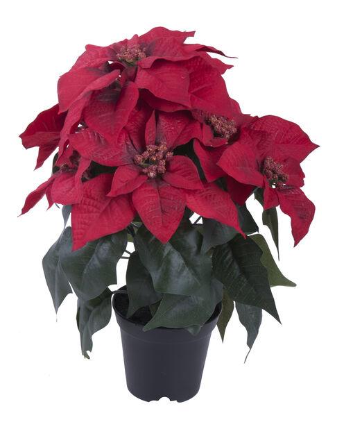 Tekokasvi joulutähti , Korkeus 37 cm, Punainen