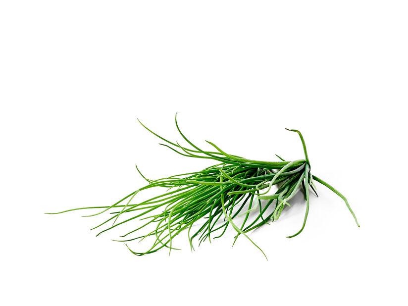 Ruohosipuli KRAV-LUOMUMERKITTY, Ø14 cm, Vihreä