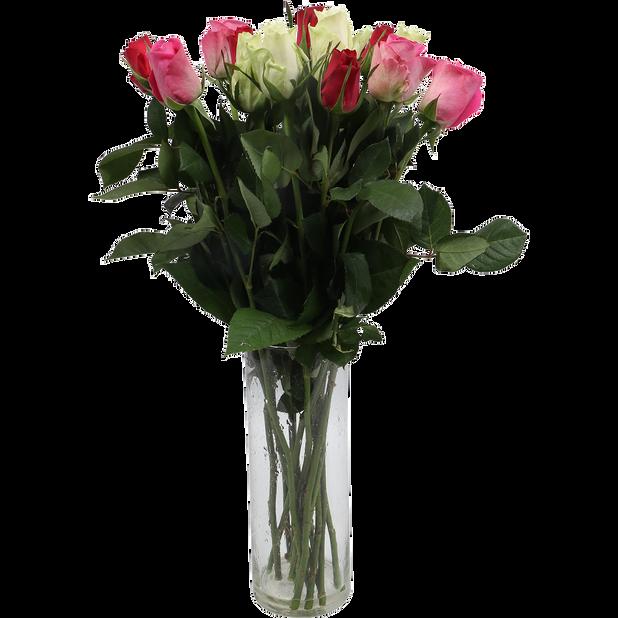 Ruusut 15 kpl, Korkeus 50 cm, Useita värejä
