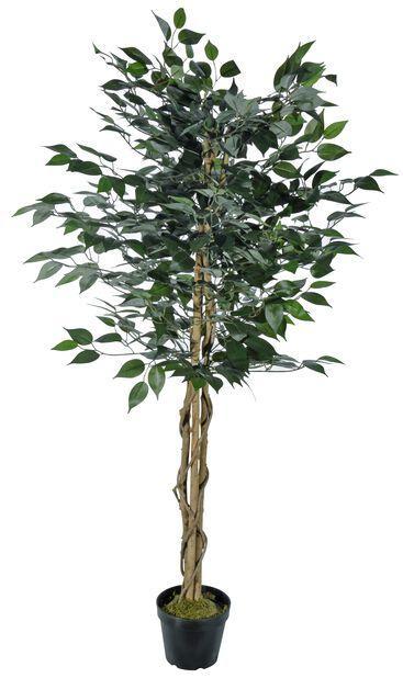 Limoviikuna tekokasvi, Korkeus 140 cm, Vihreä