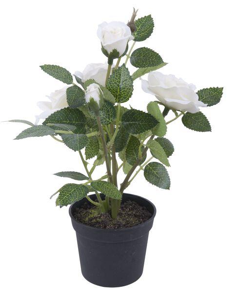 Miniruusu ruukussa, K20 cm, valkoinen, tekokasvi