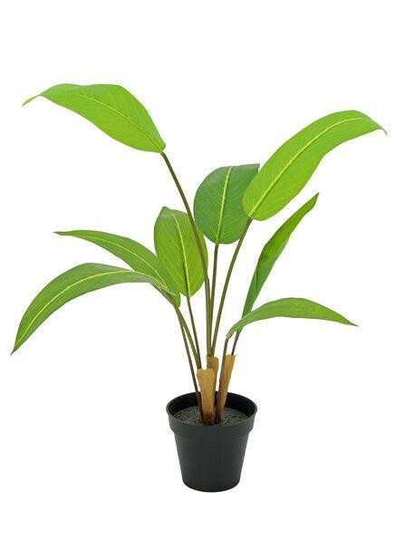 Tuonenkielo tekokasvi, Pituus 67 cm, Vihreä