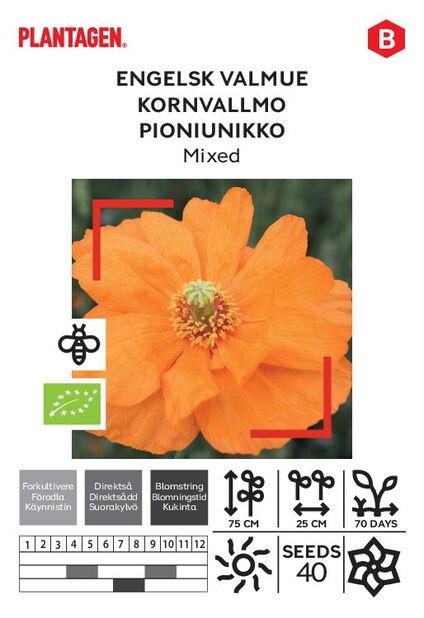Pioniunikko, Mixed