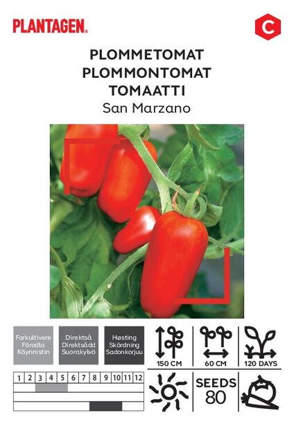 Tomaatti 'San Marzano'