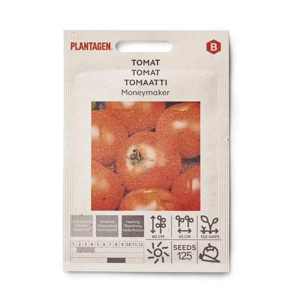 Tomaatti 'Moneymaker'