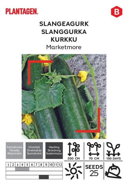 Kurkku 'Marketmore'