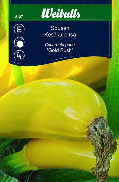Kesäkurpitsa 'Gold Rush'