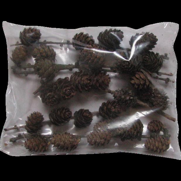 Lehtikuusen kävyt, 250 g, Ruskea