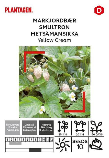 Metsämansikka 'Yellow Cream'