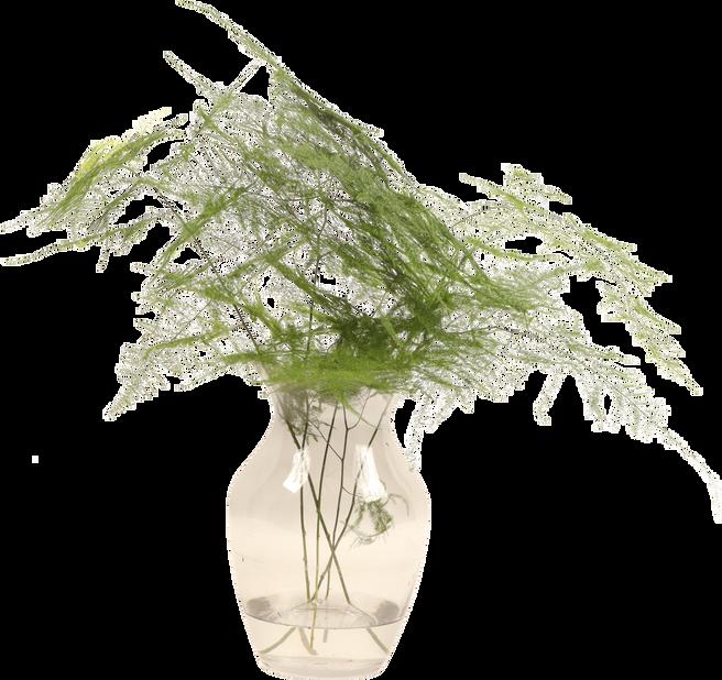 Green mix, Korkeus 50 cm, Useita värejä
